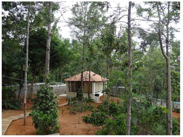 Corporate Stays in Yercaud