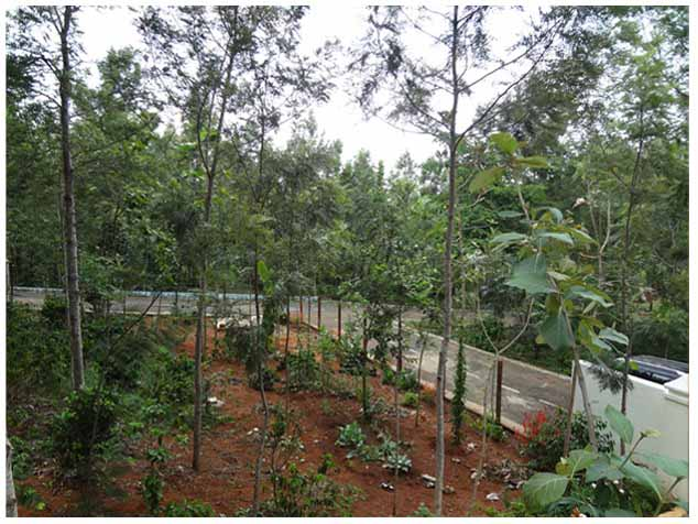 EzeeStays Villa for rent in Yercaud