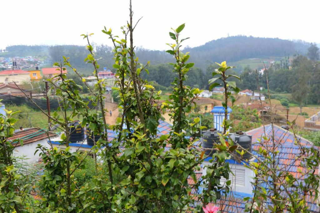 corporate stays in ooty