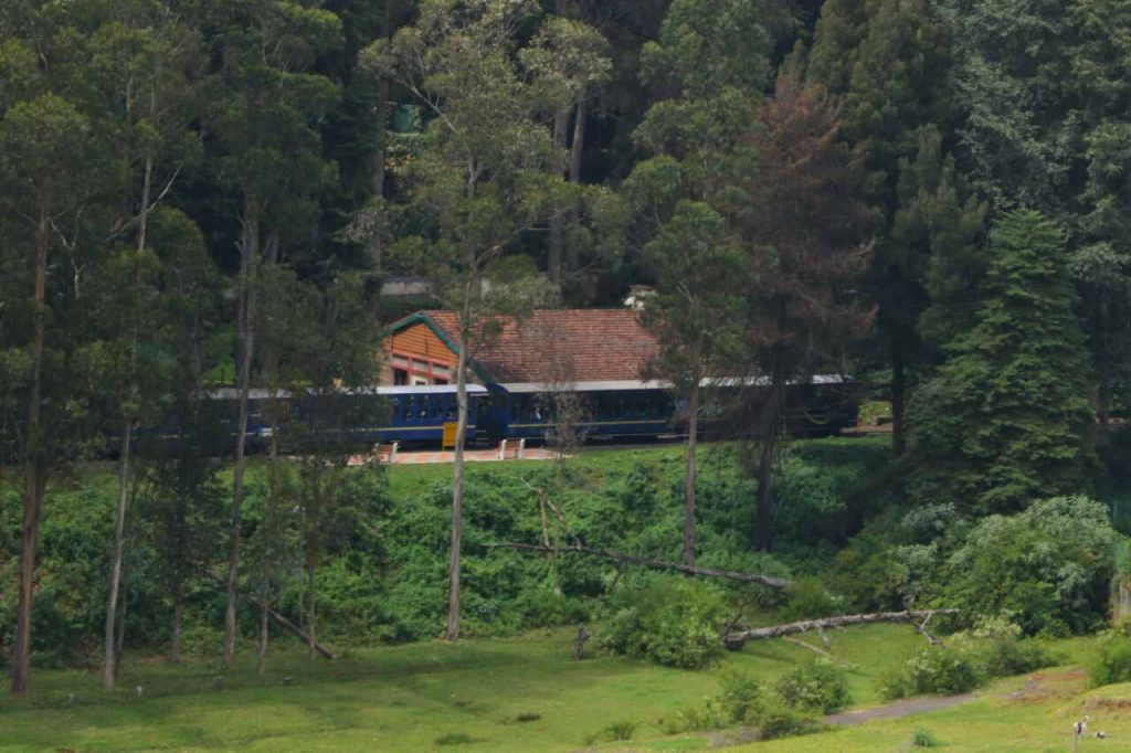 family stays in ooty