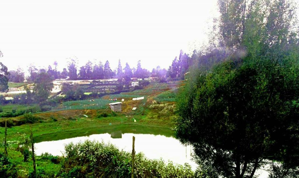 cottages for rent in ooty