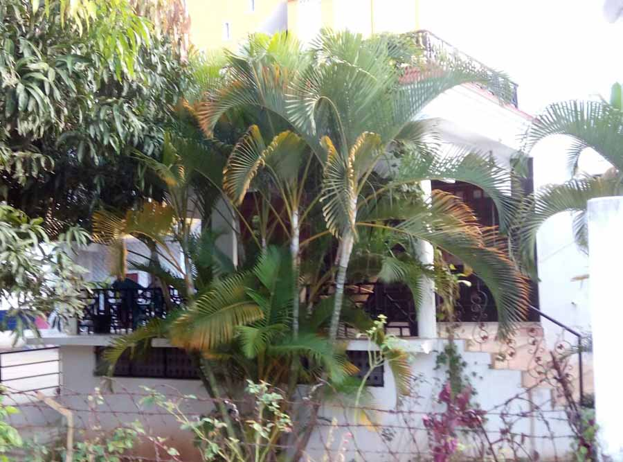 villas in yelagiri
