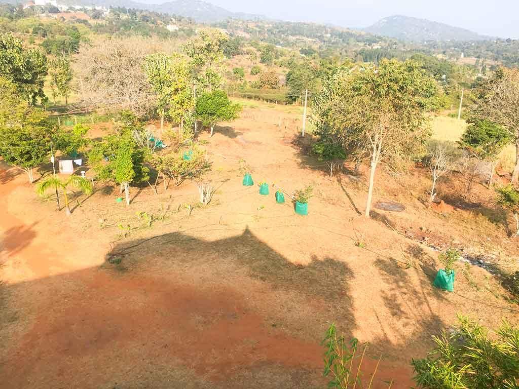 yelagiri-hills-farm-house